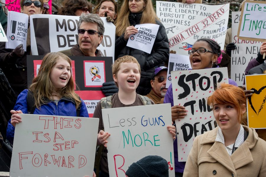 Foolish people who want to destroy America, rallying for laws that would keep guns out of the wrong hands.